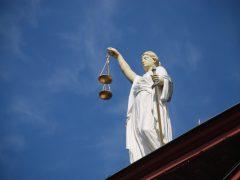 Gałęzie prawa